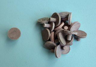 coraline ceramic frag plug large